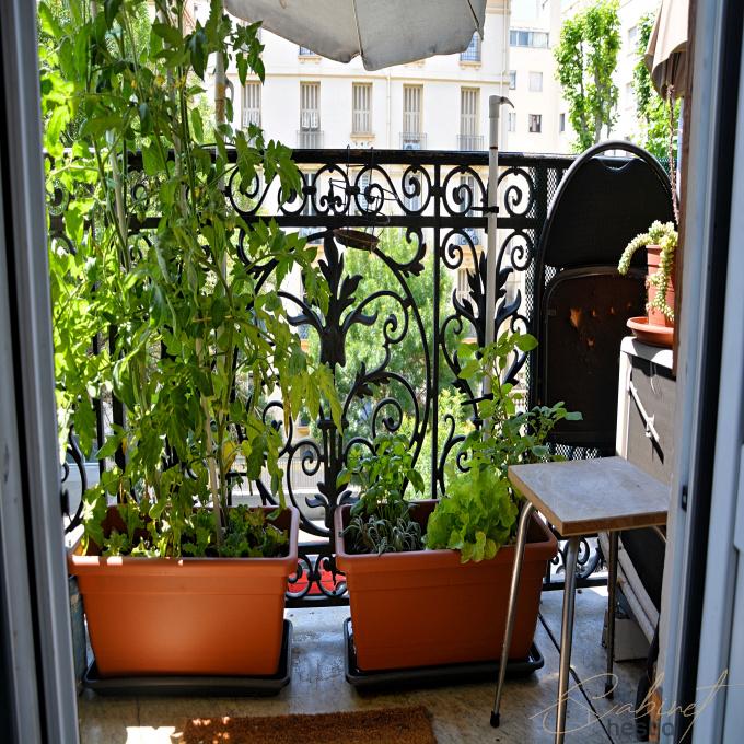 Offres de vente Appartement Nice (06300)